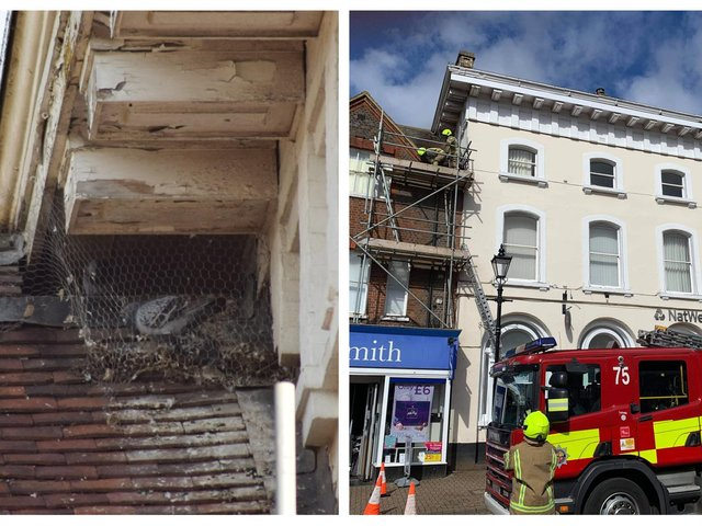 Trapped birds. Right: the fire brigade at the scene. Photo: Bedfordshire Wildlife.