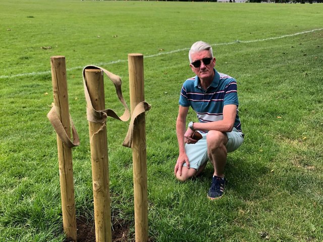 Cllr Pat Carberry in Pages Park where one of the saplings once stood. Photo: Cllr Carberry.