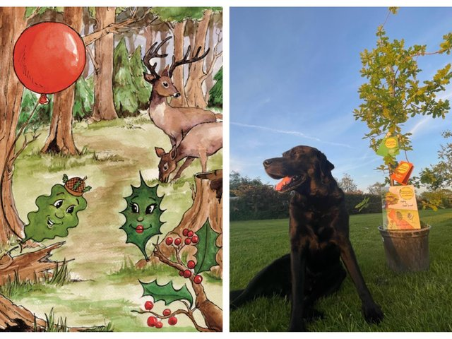 Oaky the Oak Leaf. Right: Marian's labrador, the story and swatch booklets, and an oak tree gifted from a friend for the Edlesborough Carnival float.