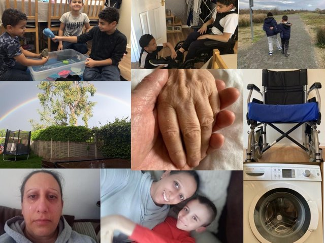 A selection of just some of the winners from Carers in Beds' photographic competition