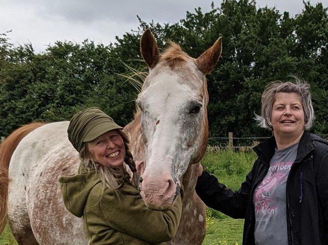 Horses Helping People: (L-R) Debbie La-Haye, Amee the Horse, and session support Beccy Ross
